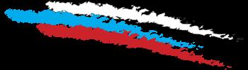 Настоящие герои России